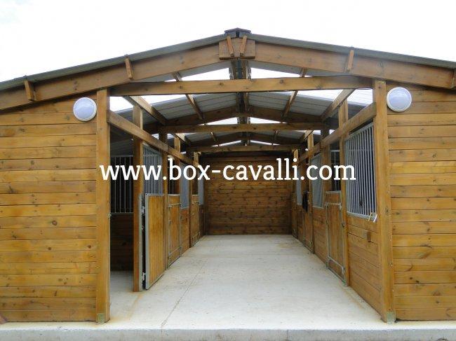 Box cavalli box in legno per cavalli capannine for Box cavalli prefabbricati